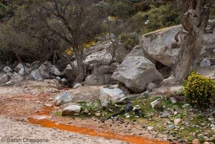Santa Cruz trekking - Huaraz